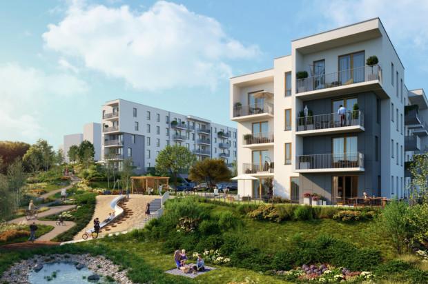 Przestrzeń pomiędzy budynkami wypełni nie tylko zieleń i przestrzenie rekreacyjne. Powstaną tu także ogrody deszczowe.