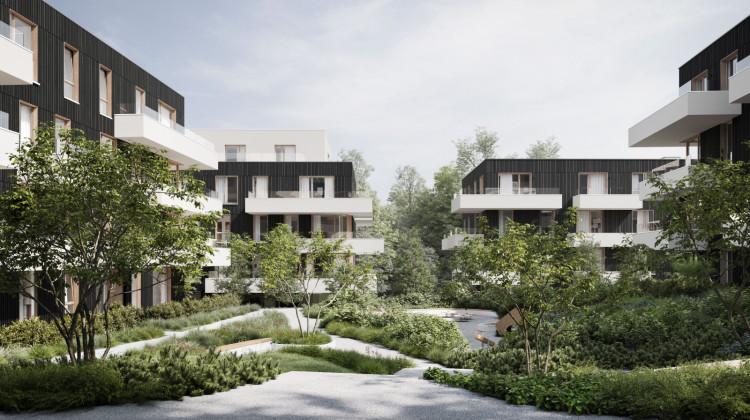 Pomiędzy budynkami powstanie bogaty program zieleni osiedlowej.