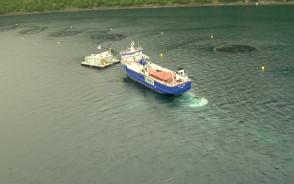 Gdyńska stocznia Crist wybuduje dwa statki do obsługi farm łososiowych.
