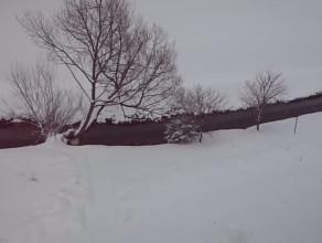Wiosenna zima :)