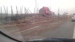 Wypadek tira z drzewem na obwodnicy