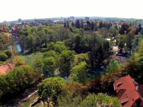 Okiem żurawia: okolice Parku Oliwskiego