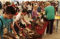 XI Bałtycki Festiwal Nauki