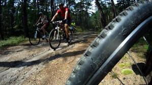 Wycieczka rowerowa po Wyspie Sobieszewskiej