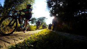 Motławski szlak rowerowy