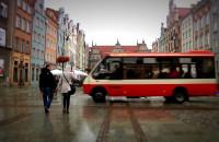 Nowa linia autobusowa w centrum Gdańska
