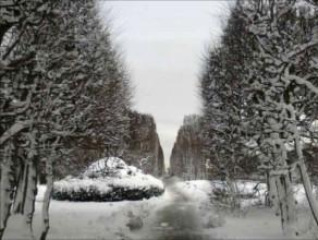 Zima na Strzyży