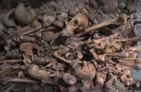 Piwnica Romańska z XII w. doczeka się otwarcia
