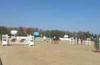 Hipodrom Sopot WKKW - konkurs konia