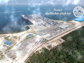 Zmiany w zwązku z budową nowego terminalu kontenerowego na Stogach