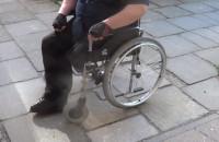 Koszmar niepełnosprawnego, Gdańsk-Niedźwiednik