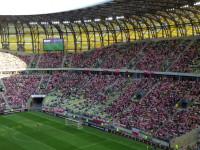 Meksykańska fala podczas Polska - Litwa