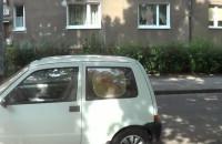 Zabezpieczenie dzieci przed słońcem w samochodzie