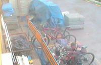 Złodzieje rowerów. Rozpoznajesz ich?