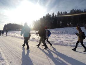 Zimowa wędrówka w okolicach Gołubia Kaszubskiego