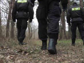 Policja poszukiwała śladów w Brzeźnie