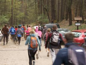Dogtrekking, czyli bardzo aktywny spacer z psem