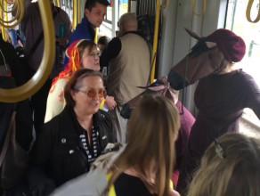 Zwierzęta śpiewają w tramwaju