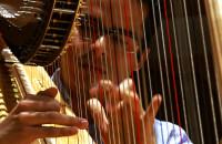 Harfa - piękna, lecz wymagająca