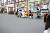 Kucyki na jarmarku -  koszmar czy hit?
