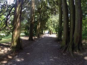 Wizyta w Arboretum Wirty