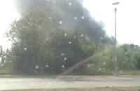 Dym na Hallera