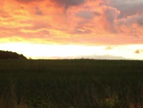 Czerwone Niebo - Gdynia - Wiczlino