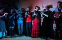 La Noche Flamenca IV