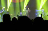 Kult zagrał w Gdyni