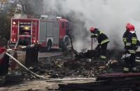 Dogaszanie pożaru pustostanu na ul. Braci Lewoniewskich