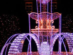 Iluminacje  świąteczne  w Parku Oliwskim