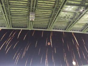 Fajerwerki nad stadionem po zwycięstwie Lechii nad Podbeskidziem 5:0