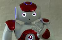 Roboty w Centrum Hewelianum