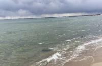 Niezwykły kolor wody na plaży w Gdyni