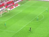 Naprawianie murawy w przerwie meczu Polska - Holandia
