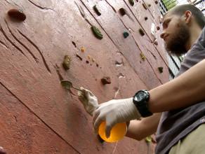 Szympansy mają ściankę wspinaczkową