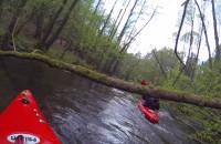 ekajaki.pl - spływy kajakowe najpiękniejszymi rzekami Pomorza!