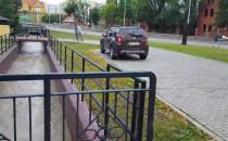 Strzża wzdłuż Trasy Słowackiego na...