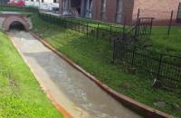 Potok Strzyża w Parku Kuźniczki