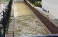 Potok koło ul. Grażyny
