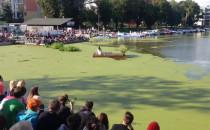 Feta pływa na Żabim Kruku