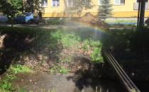 Tęcza w Parku Oruńskim dzięki robotnikom :)
