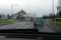 Korek w Kosakowie - żółwie tempo