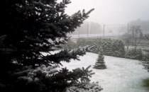 Pod Trójmiastem już zima. Pada intensywny...