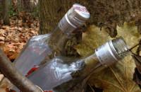 Zaśmiecony las na Ujeścisku