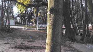 Sztorm w Jelitkowie