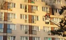 Trwa akcja gaśnicza na Witominie