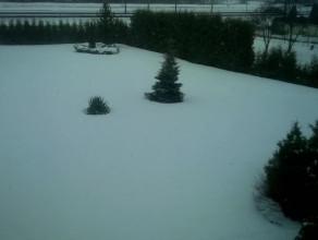 Znowu śnieżyca w Trójmieście