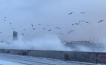 Sztorm i opady śniegu na gdyńskim Bulwarze