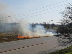 Pożar trawy na wjeździe do Pruszcza Gdańskiego